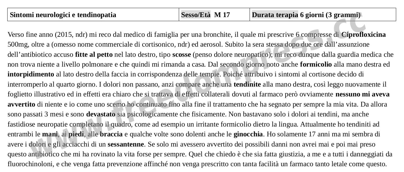Testimonianza 14