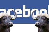 """OCCHIO ALLA BUFALA: """"Una vita da social"""" pagina della Polizia di Stato su facebook avverte"""