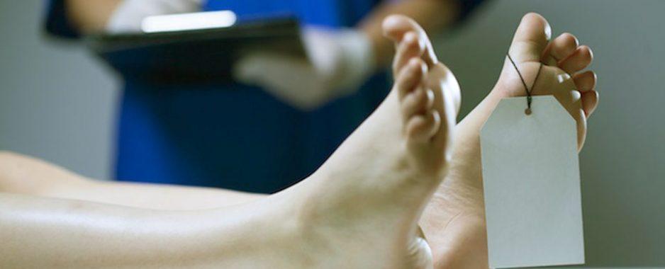 """Donazione degli organi. Il Ministro Grillo firma il decreto che avvia il """"silenzio/assenso"""" per il prelievo"""