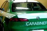 L'Arma dei Carabinieri festeggia la soppressione della Forestale, ma fa i conti senza l'oste
