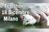 """NO A TELETHON. In piazza scendono LEAL e Riscatto Animale: """"Finanziano la ricerca con gli animali, una frode scientifica"""""""