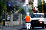 """Roma Capitale, libero uso di zanzaricidi/pesticidi nelle aree urbane pericolosi alla salute. """"La Raggi intervenga con urgenza"""""""