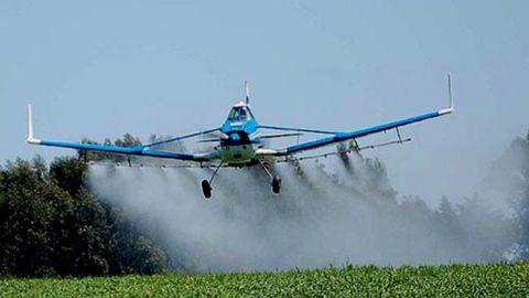 UE. Arriva lo stop definitivo di 3 pesticidi in campo aperto che uccidono le api