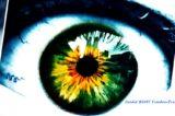 Malattie Rare dell'occhio. G.O.A.L. la guida in 6 passi per riconoscere i sintomi per una diagnosi precoce