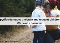 """EFSA, sul pesticida Chlorpyrifos, attacco al cervello: """"Effetti genotossici e neurologici sullo sviluppo nei bambini"""""""
