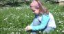 """Pesticidi, il controsenso targato M5S. European Consumers: """"DELMUR, serial killer autorizzato dal Ministero della salute"""""""
