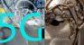 """5G, giù la maschera. Inedito dossier ISDE-European Consumers: """"Nessun alibi per i Sindaci e il Governo Conte Bis"""""""