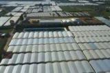 Sicilia. Plastica tossica delle serre esportata in Cina per produrre scarpe vendute in Italia