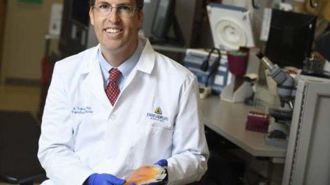 """USA, Covid-19. FDA autorizza studio con plasma immune. Casadevall:""""Non solo per pazienti, ma anche per prevenzione"""""""